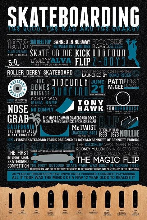 Plakat Skateboarding - The Good, The Rad & The Gnarly