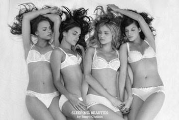 Plakat Sleeping beauties - Tanya Chalkin