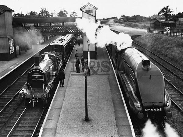 Reprodukcja Steam train at Stevenage Station 1938