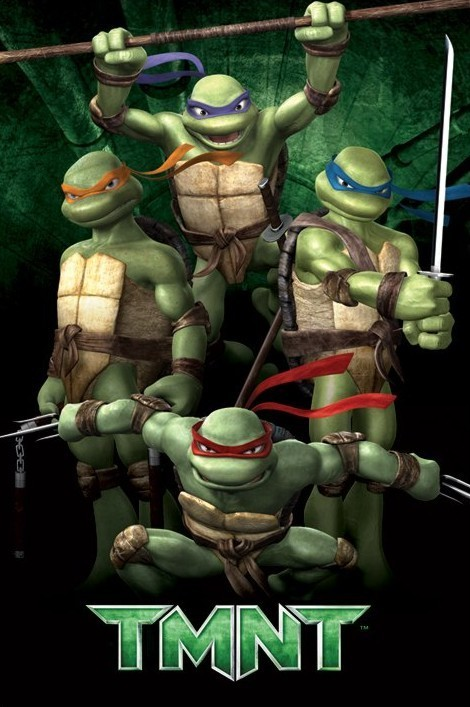 Plakat TURTLES - green