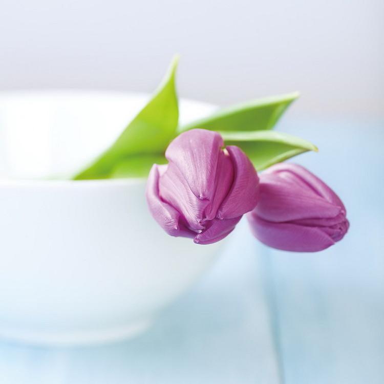 Obraz Purple Tulipans in the Bowl