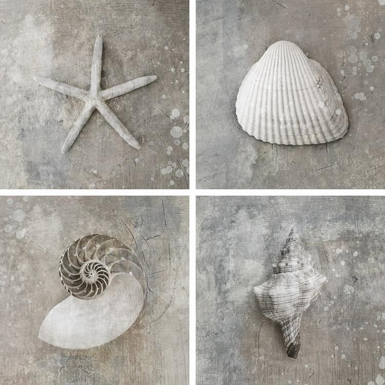 Obraz Sea - White Collage
