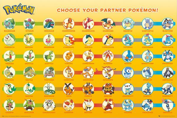 Pokemon Partner V27728