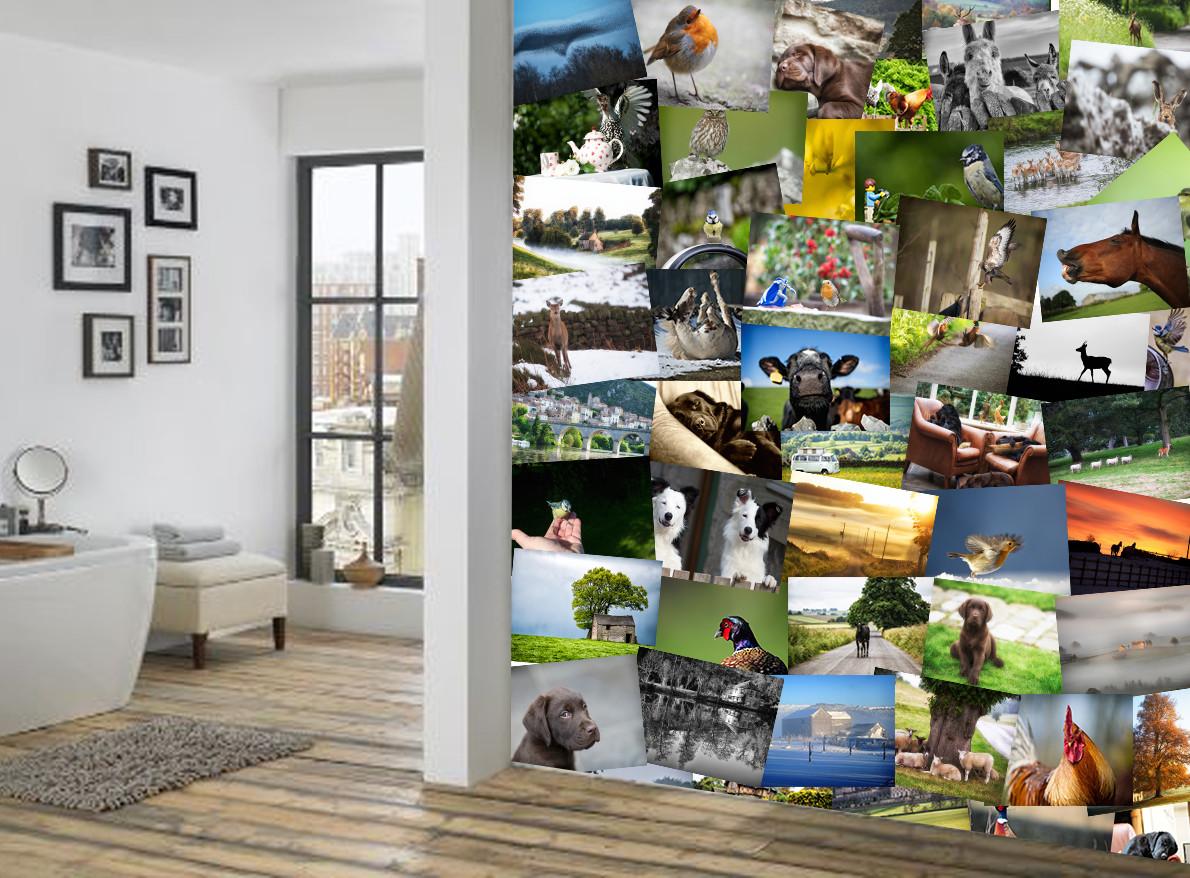 animaux poster mural papier peint acheter le sur. Black Bedroom Furniture Sets. Home Design Ideas