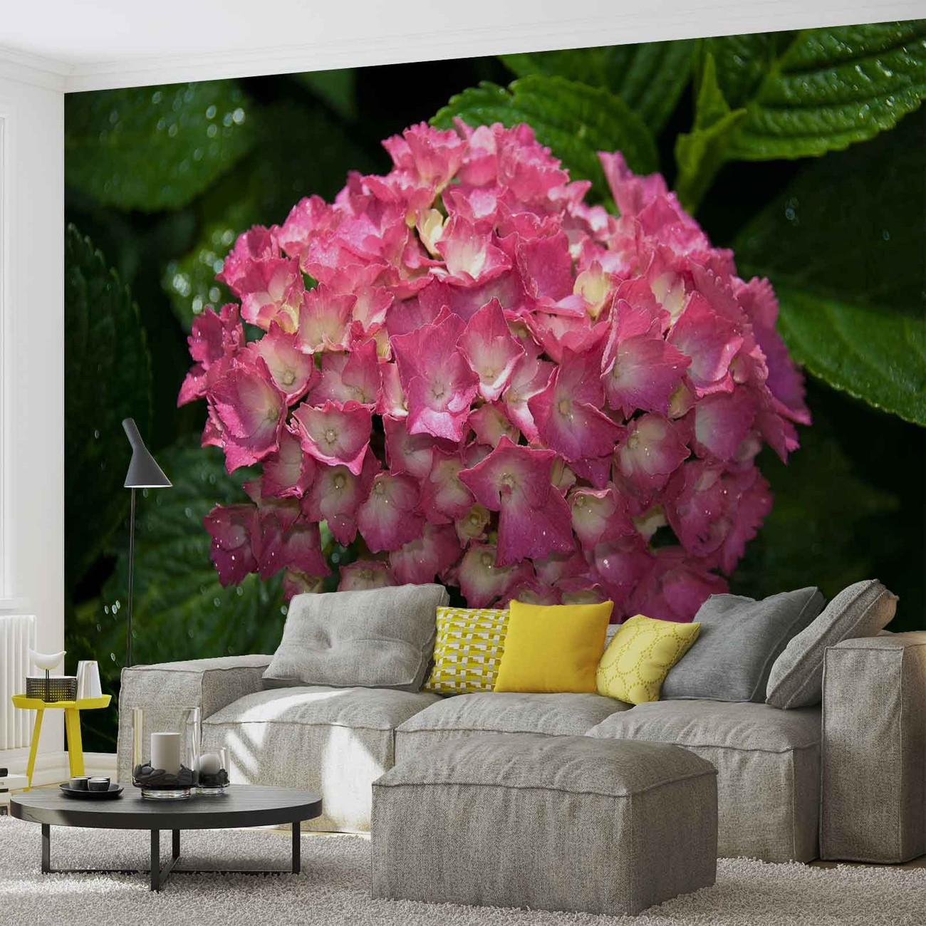 Flowers hydrangea pink wall paper mural buy at europosters Mural of flowers