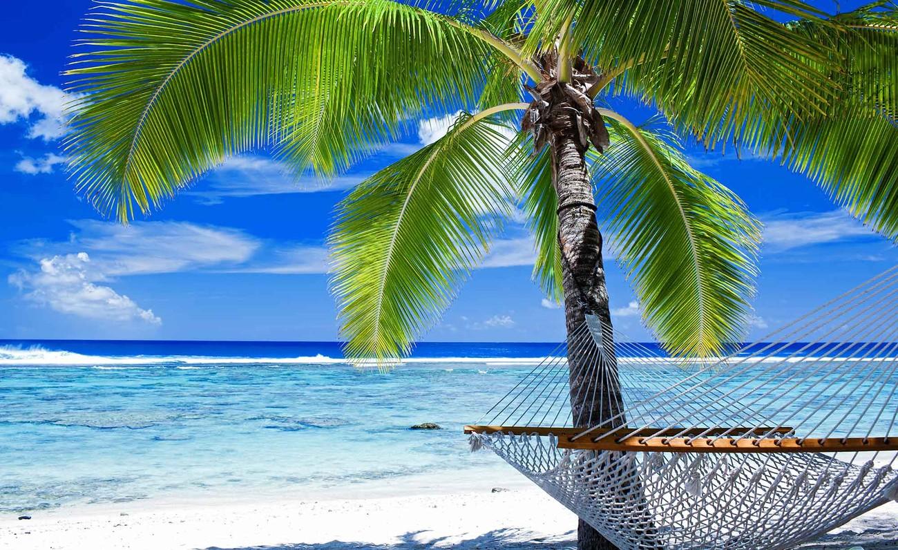 beach sea sand palms hammock wallpaper mural beach sea sand palms hammock wall paper mural   buy at europosters  rh   europosters eu