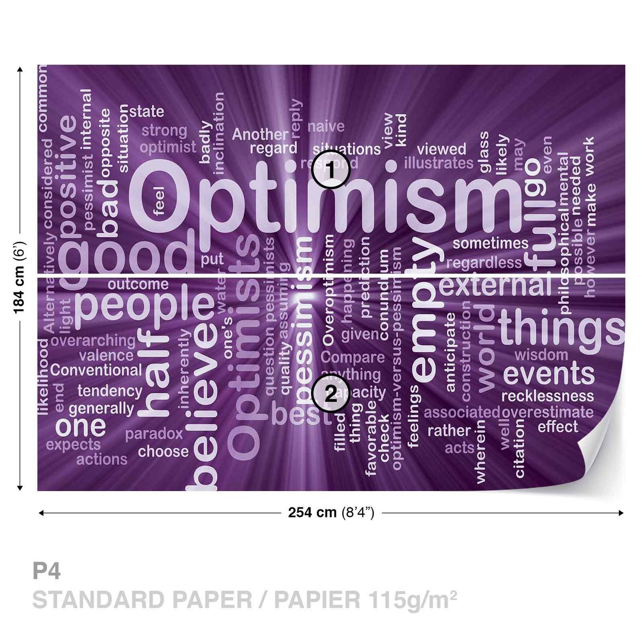 optimism paper Q: you have a paper called prescribed optimism that is about, essentially, how  optimistic people think one should be does that shed light on.
