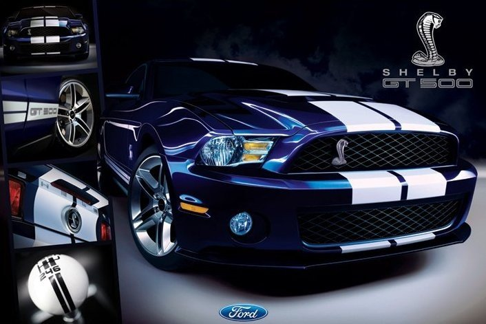 ford shelby mustang gt500 poster affiche acheter le sur. Black Bedroom Furniture Sets. Home Design Ideas