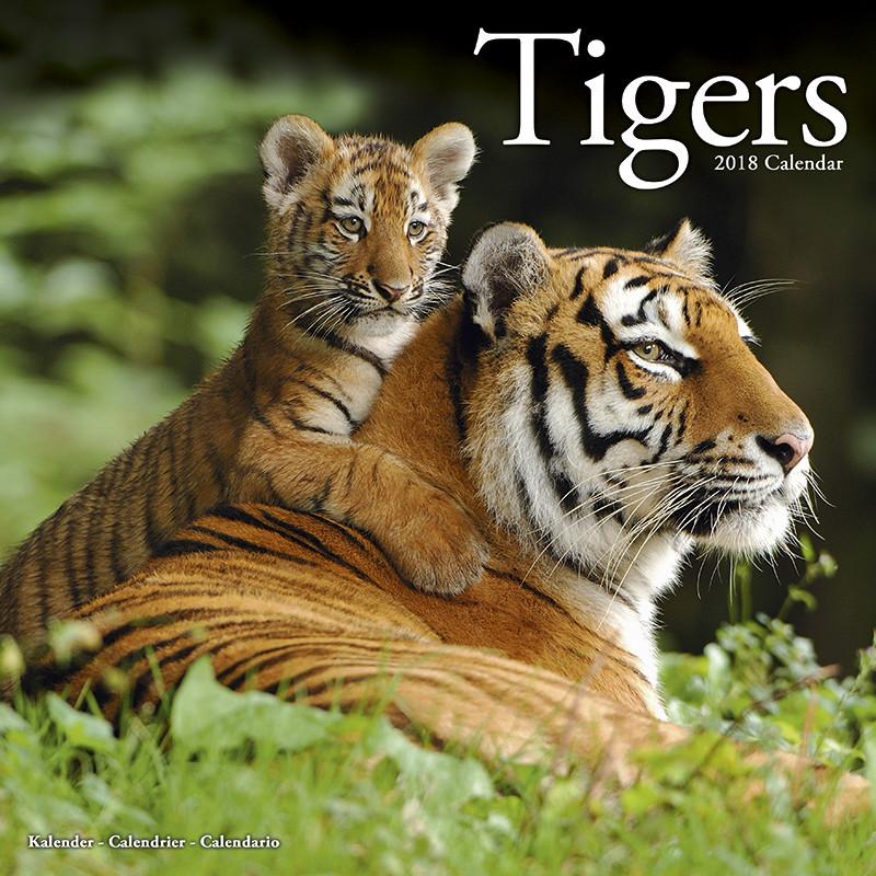 Calendario Tiger 2019.Tigers Calendars 2019 On Ukposters Abposters Com