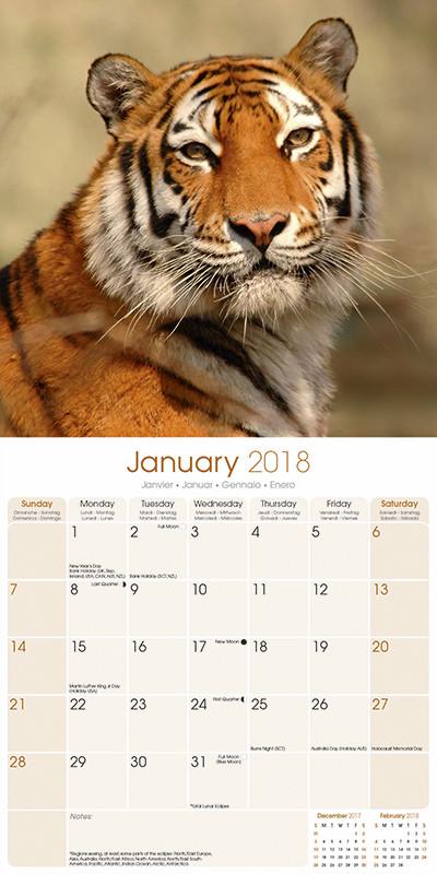 Calendario Tiger 2019.Calendar 2019 Tigers