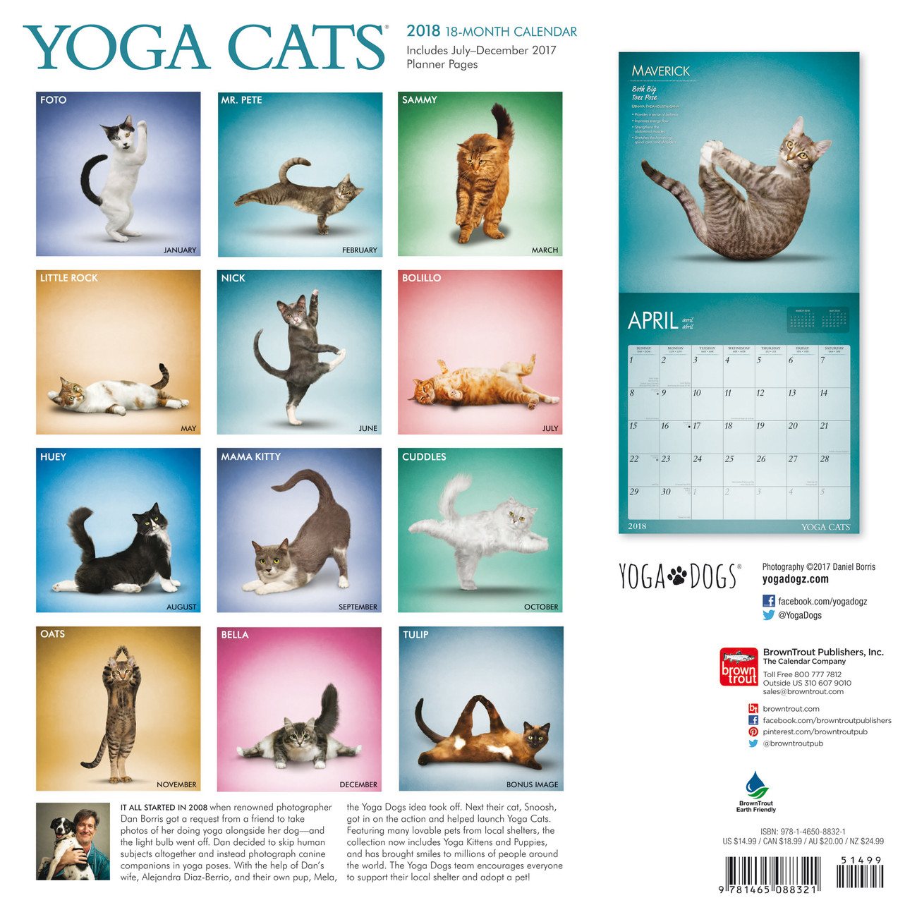 Yoga Cats And Dogs Calendar