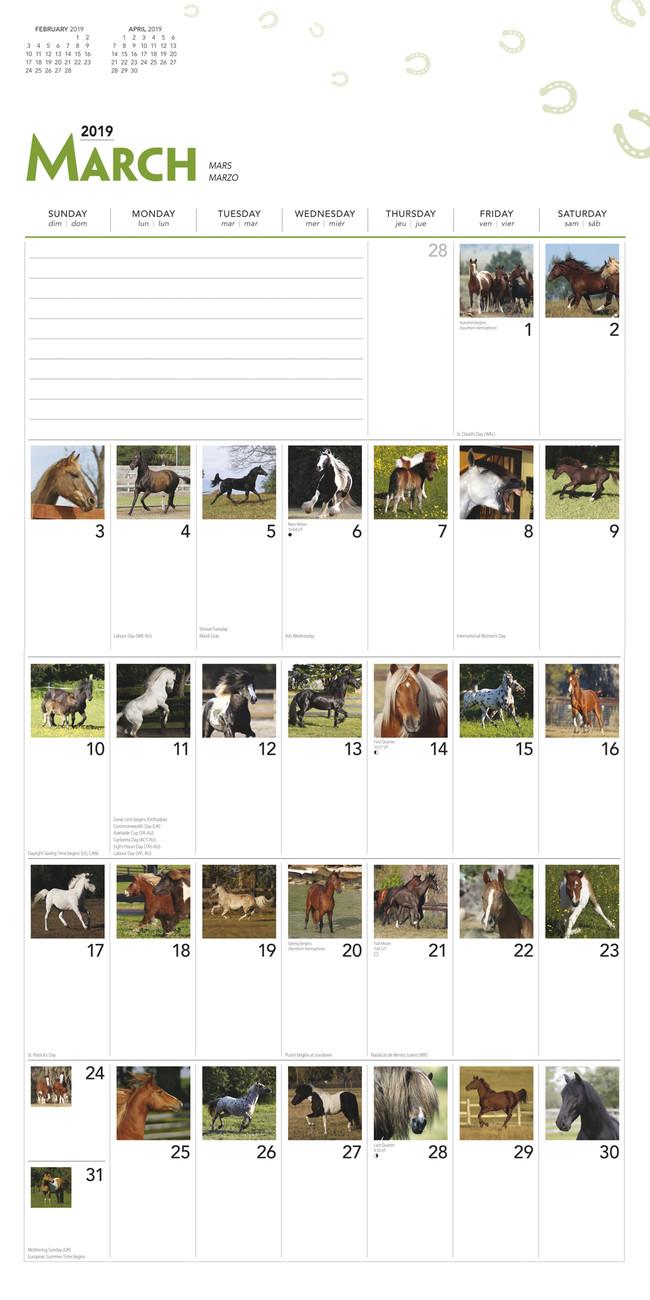 Calendario Scolastico 2020 16 Veneto.Calendario 365 2020