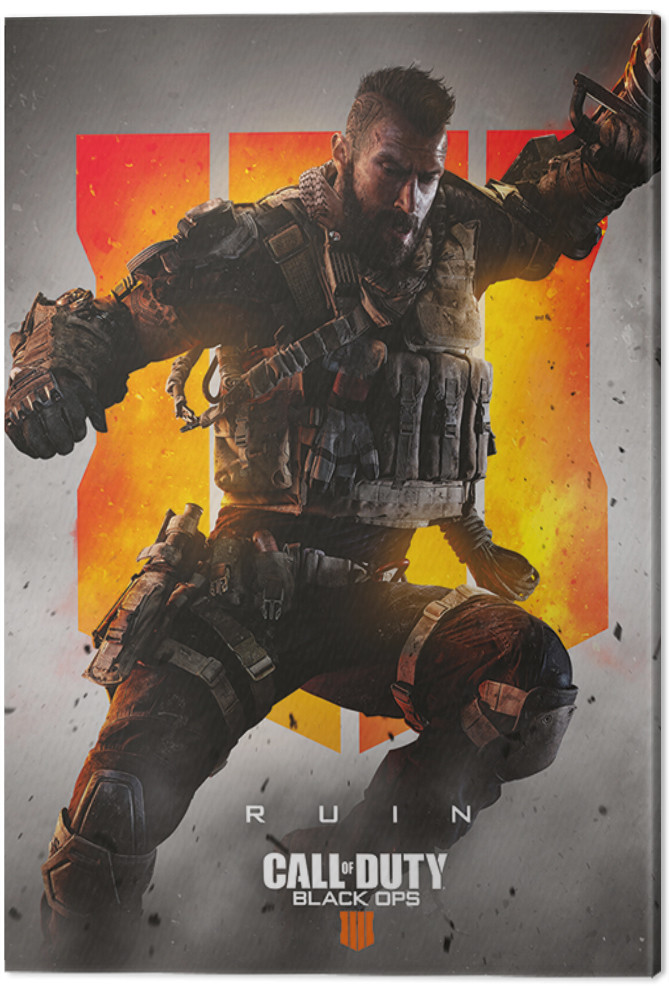 Canvas Print Call Of Duty Black Ops 4 Ruin Wall Decorations Europosters
