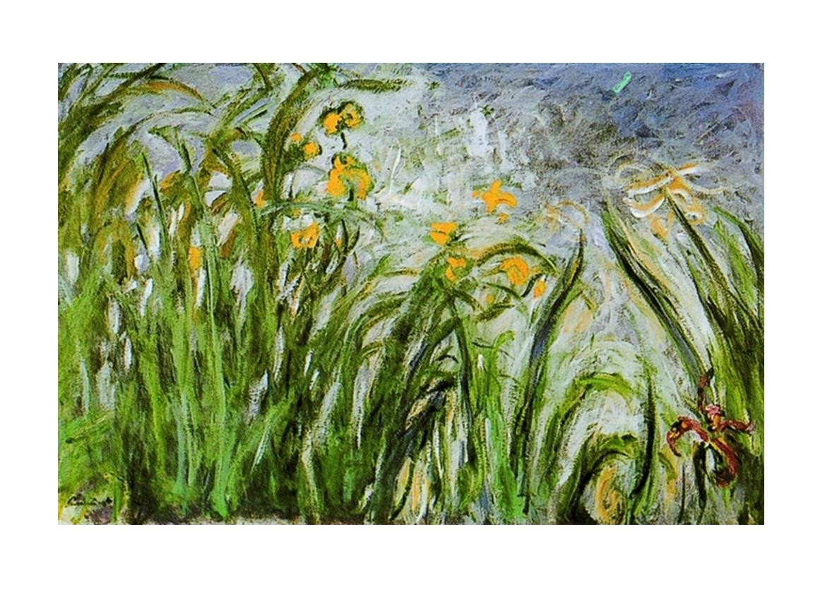 Foto Fiori Gialli.Claude Monet Campo Di Fiori Gialli Art Print Buy At Europosters