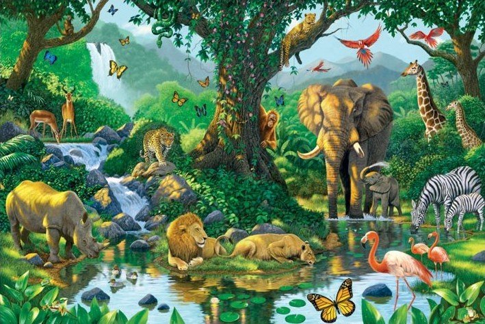 Harmony jungle poster sold at europosters for Creation mural kids