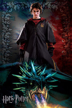 Harry Potter 4 Dragon Poster Sold At Ukposters