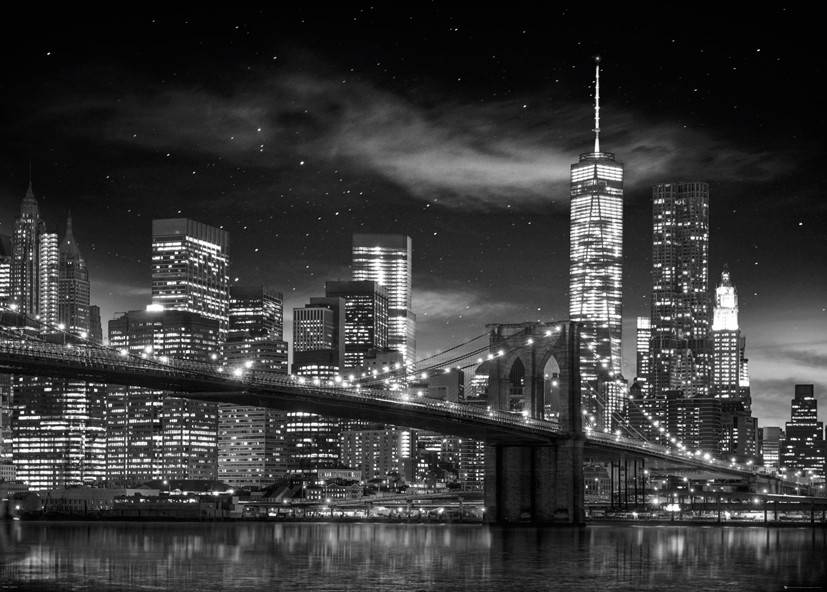 New york freedom tower bw poster