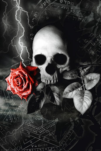 Skull Rose Poster Sold At Ukposters