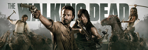 THE WALKING DEAD - Banner Poster, Art Print