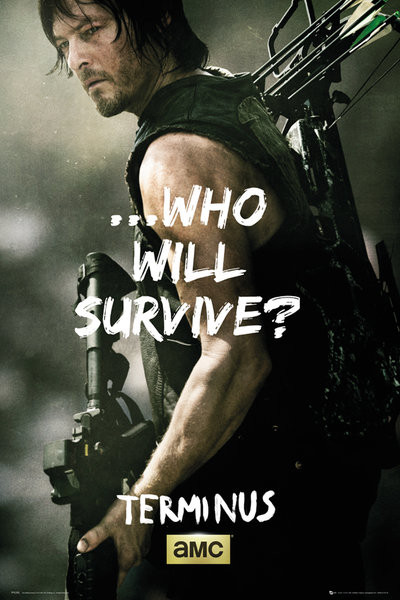the walking dead daryl survive poster sold at europosters. Black Bedroom Furniture Sets. Home Design Ideas