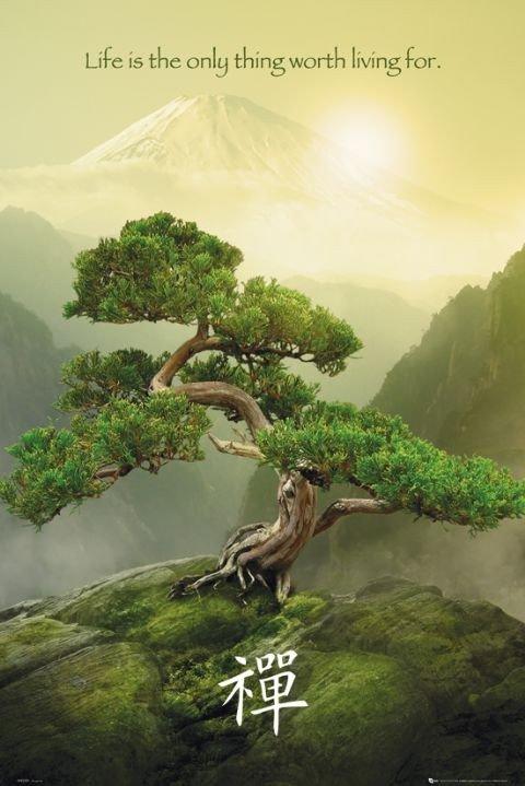 Zen poster sold at europosters - Image zen nature ...