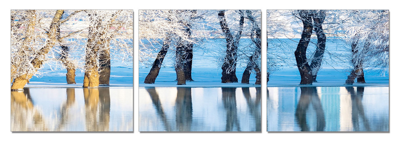 Frozen Trees Mounted Art Print