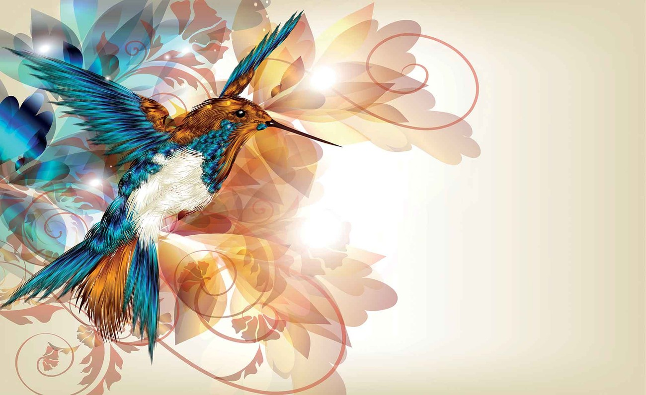 Birds hummingbirds flowers abstract wall paper mural buy for Bird mural wallpaper