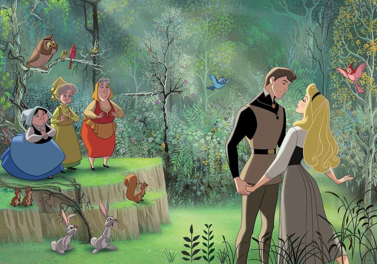 Disney Princesses Sleeping Beauty Wallpaper Mural Next 1 2 3 4 5