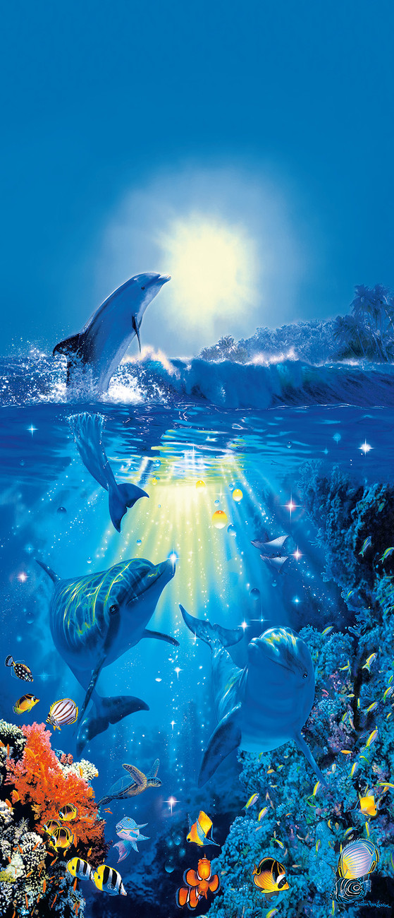 Dolphin in the sun christian riese wall mural buy at for Dolphin mural wallpaper