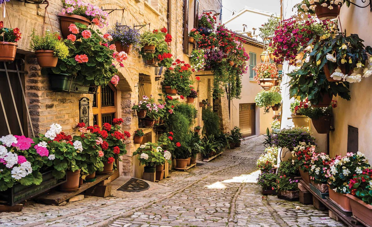 Mediteranean with flowers wall paper mural buy at for Mural of flowers