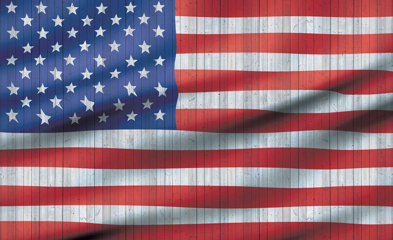 USA American Flag Wall Paper Mural