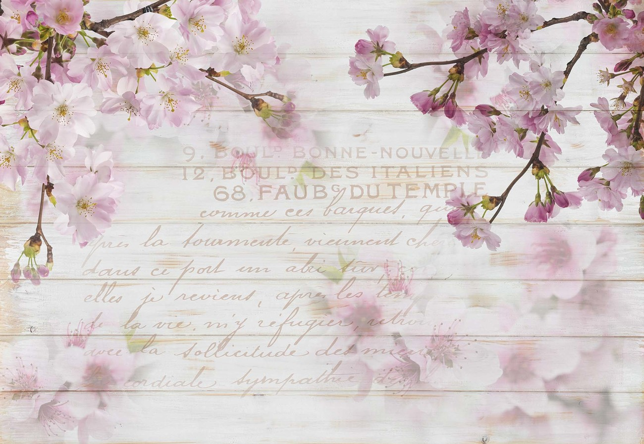 Vintage Chic Cherry Blossom Wood Planks Wall Paper Mural Buy