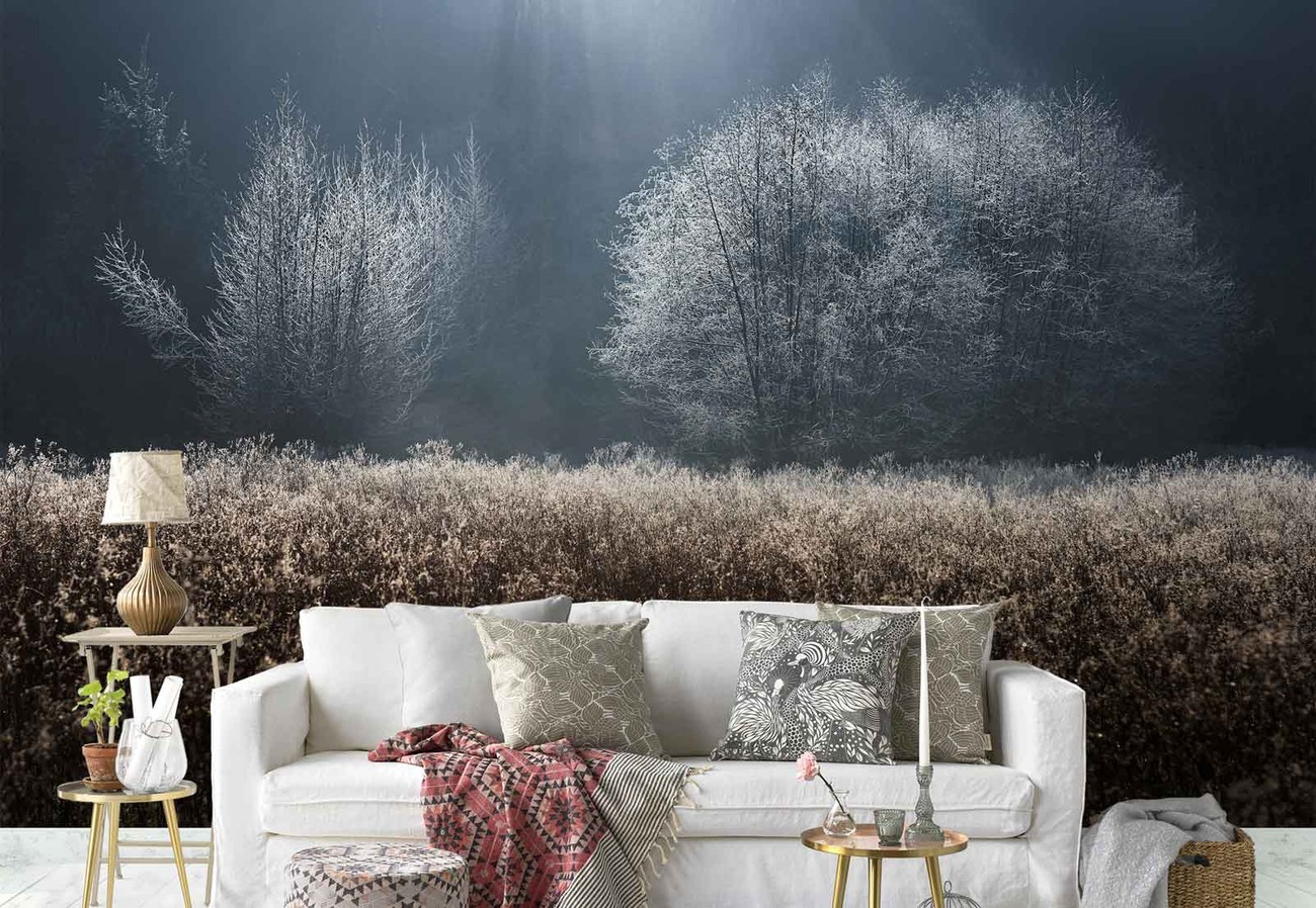 Winter field wall paper mural buy at ukposters for Winter wall murals