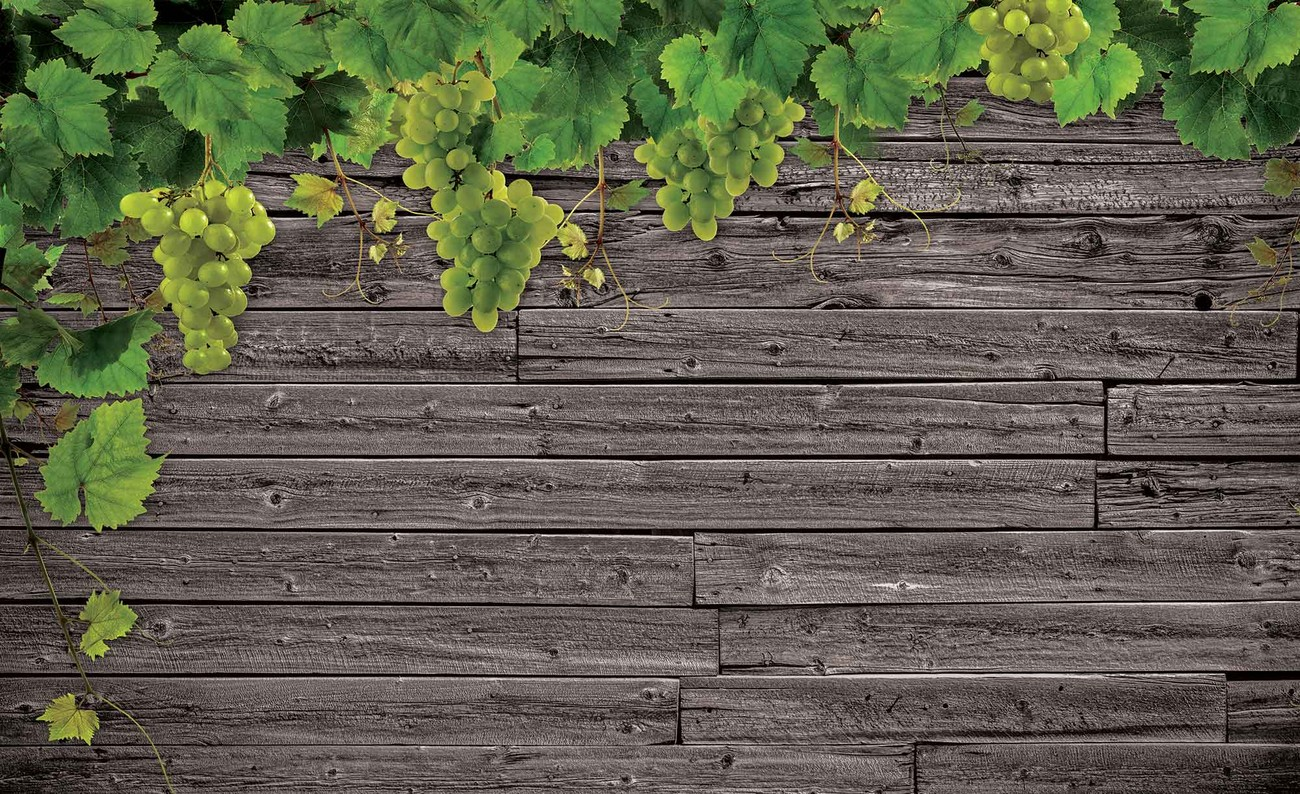 Wooden Wall Grapes Wall Paper Mural Buy at EuroPosters