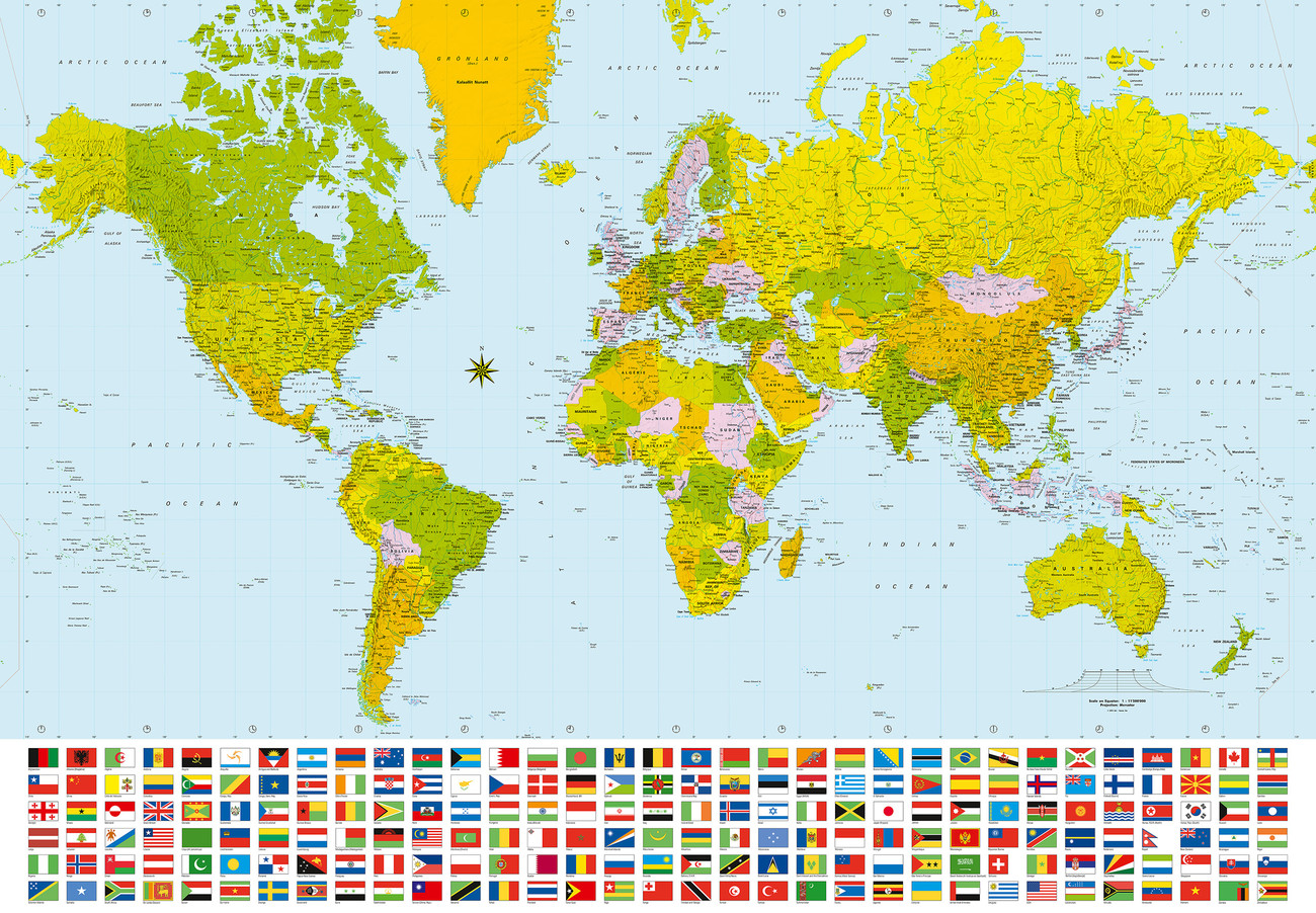 world map political wall mural buy at europosters