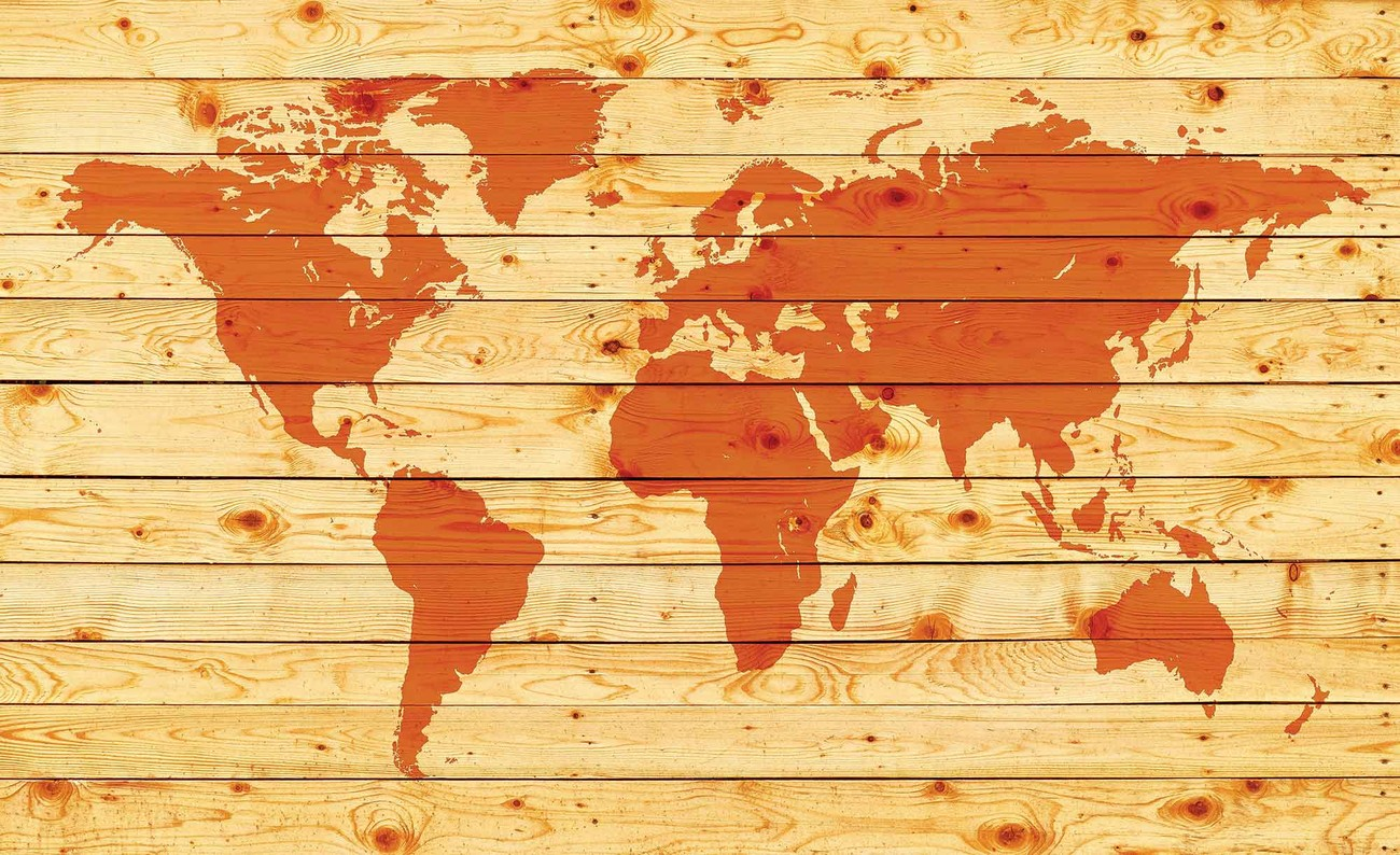 Wild Animal Wall Stickers World Map Wood Planks Wall Paper Mural Buy At Europosters