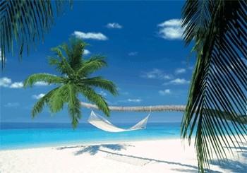 3D Julisteet MALDIVES ISLAND - hammock