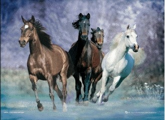 3D Julisteet Running horses - bob langrish