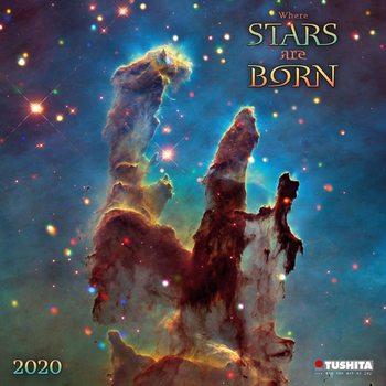 Calendar 2021 A Million Stars are Born