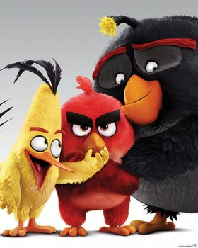 Angry Birds - Characters Affiche