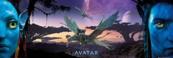 Avatar limited ed. - landscape Affiche