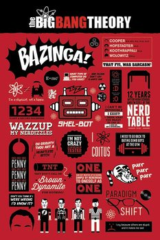 BIG BANG THEORY - infographic Affiche