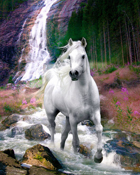 Bob Langrish - waterfall Affiche