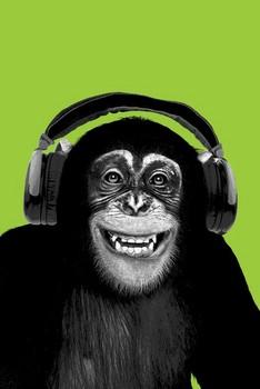 Chimpanzee headphones Poster