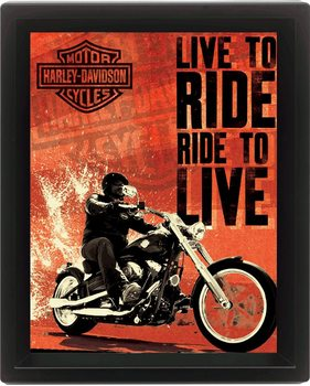 HARLEY DAVIDSON - live Poster en 3D encadré