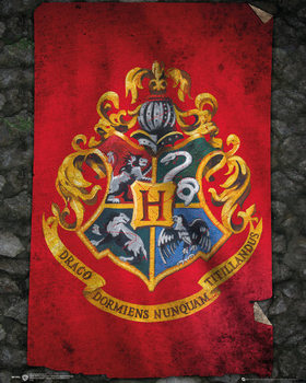 Harry Potter - Hogwarts Flag Affiche