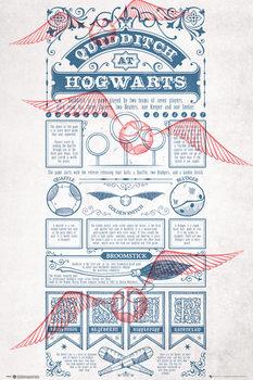 Harry Potter - Quidditch At Hogwarts Affiche