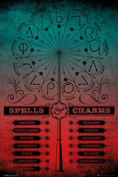 Harry Potter - Spells And Charms Affiche