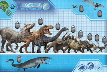 Jurassic World - Size Chart Affiche