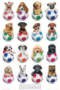 Keith Kimberlin - Puppies Footballs Affiche